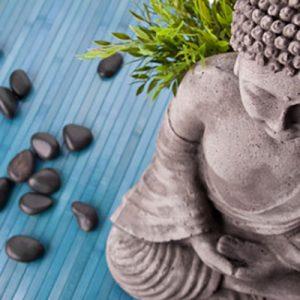 Meditation Instruction